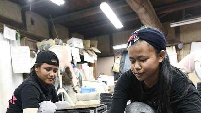 在日外籍劳动者创新高,中国人最多