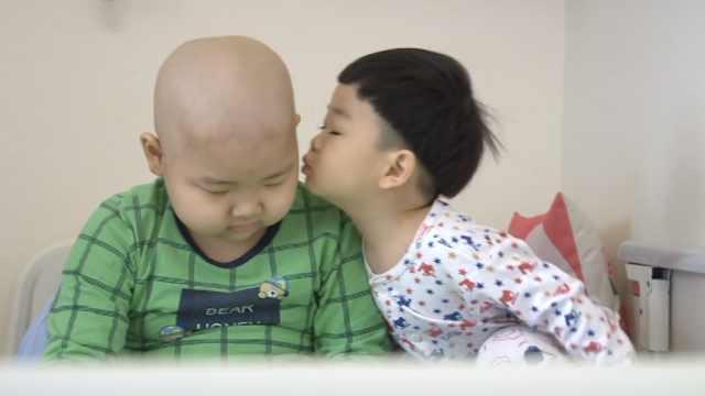 男童5年2次患白血病,父母生2胎救他