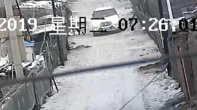 2男为解馋开车去毒狗,赔3千被行拘