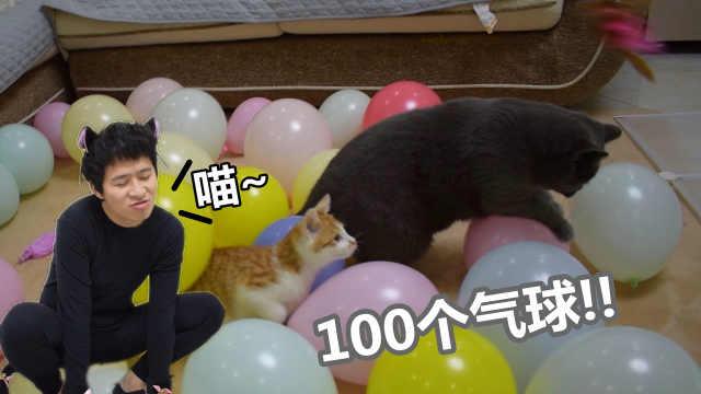 2只猫和100个气球会怎样?