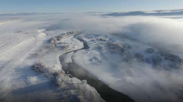 奇观!新疆河谷云海雾凇美若仙境