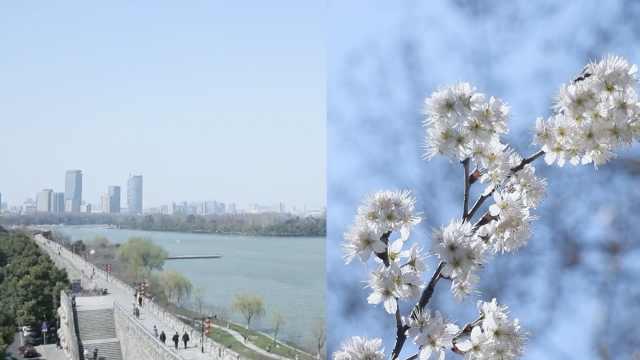 阴雨难阻上海入春,春捂秋冻不可少