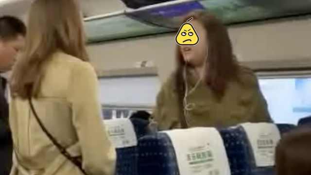 刷屏的火车骂人女子被抓:行拘5日