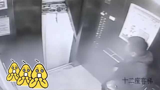业主踹飞电梯门:我只是想踢蚊子