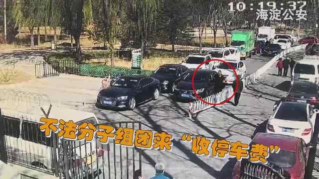 """海淀警方打掉樱花节""""黑停车""""团伙"""