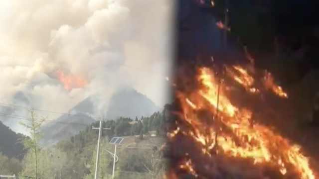 森林失火2村民上山后失联,意外遇难
