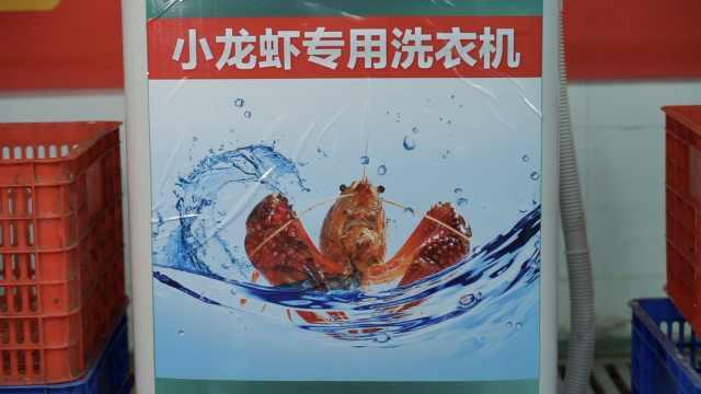 小龙虾专用洗衣机?3分钟转虾150次