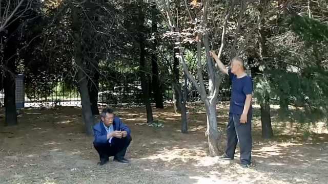 父亲骑车30里躲树林,偷陪儿子高考