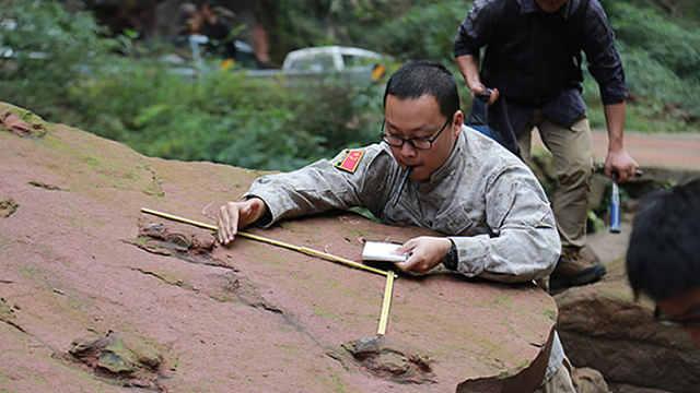 发现足迹!江苏一亿年前有恐龙!