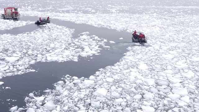 南极海冰面积骤减,或加剧全球变暖