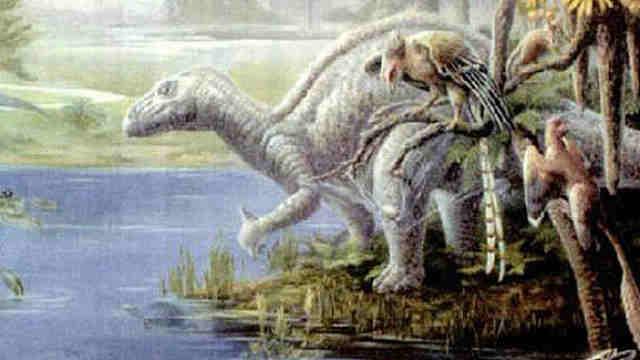 鸟类和恐龙的腿为何一样?