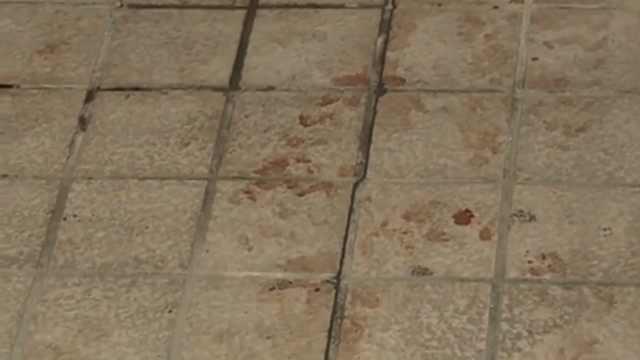 日女子被刺重伤,起诉警方无视报案
