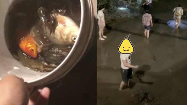 汾河放水市民狂捞鱼,有人1夜捞30斤