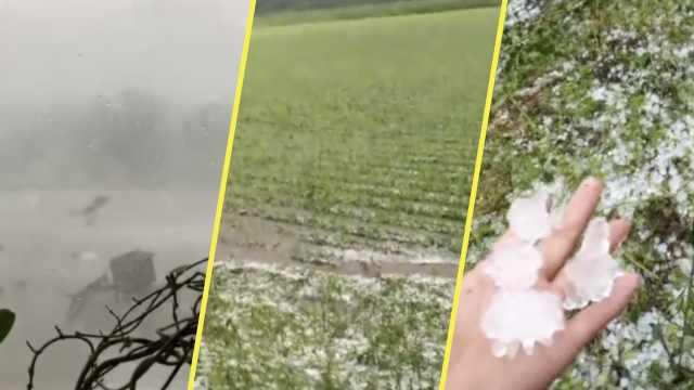黑龙江大风冰雹,车被吹跑砸毁庄稼