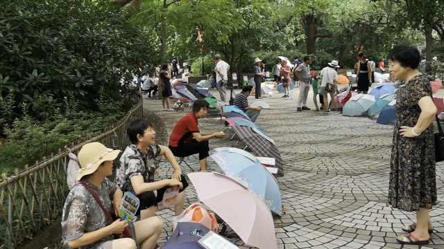 上海相亲角:低于1.7米中介划名字