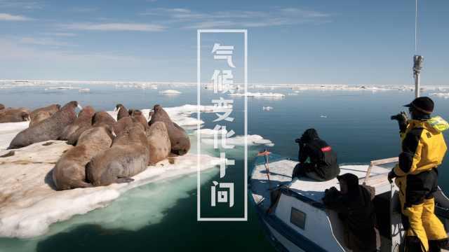 冰川融化加剧,我们会被淹没吗?