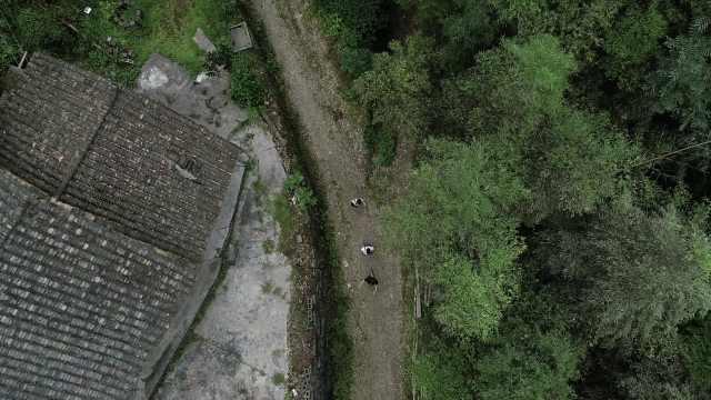 青年地质勘察队,走村访寨义务排险
