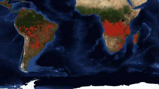 NASA:非洲大火数量是亚马逊的5倍