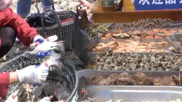 青岛开海首日,海货上岸现煮现吃