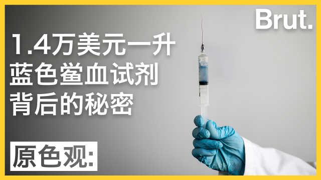 天价蓝色鲎血试剂背后有什么秘密?