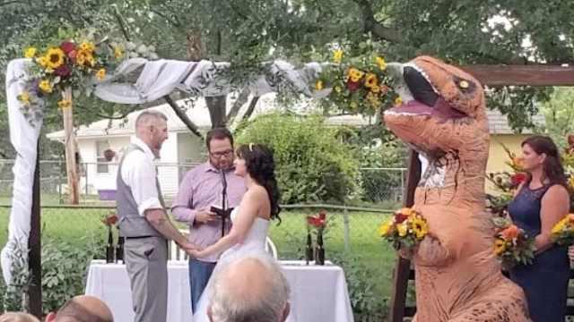 爆笑!妹妹穿恐龙服当姐姐的伴娘
