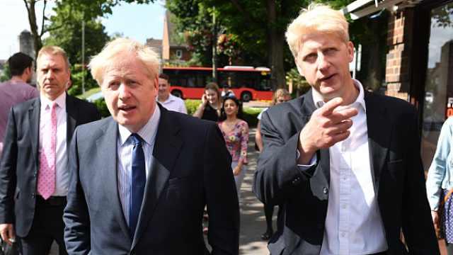 累了!英首相弟弟乔·约翰逊辞职