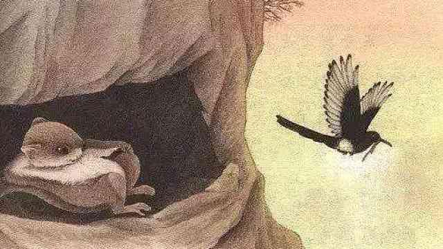 语文课本又错了!寒号鸟不是鼯鼠