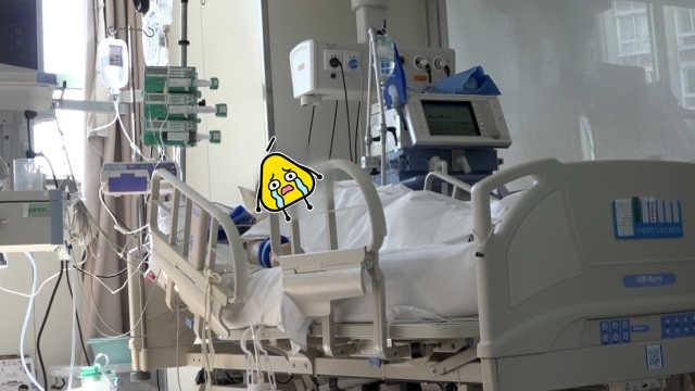 男子过度健身险丧命:动脉血管损伤
