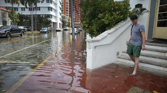 联合国报告预警:海平面将大幅上升