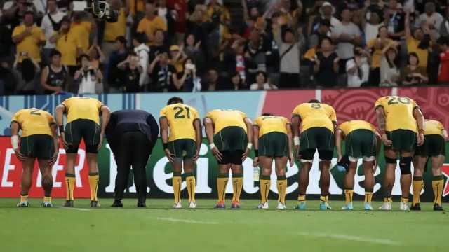 橄榄球世界杯:多国队员行日式鞠躬