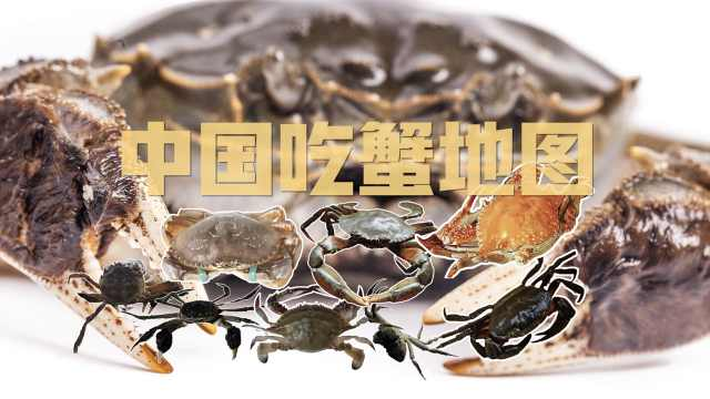 中国吃蟹地图:谁敢PK阳澄湖大闸蟹