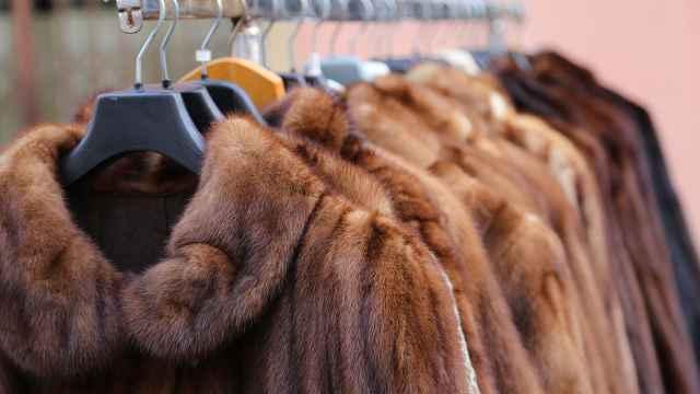 禁毛皮!美国加州禁止制造销售皮草