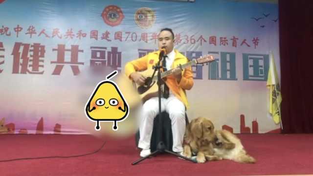盲人为导盲犬写歌:感恩它为我导航