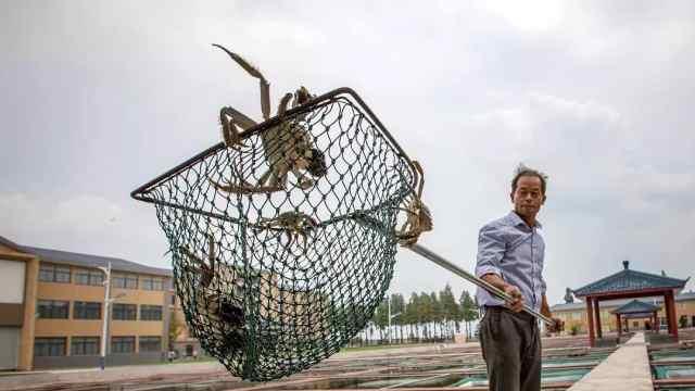 你买的阳澄湖大闸蟹来自哪里?