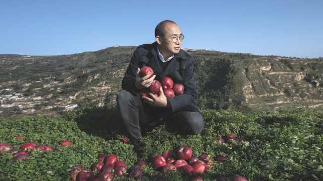 帮甘肃带货,潘石屹买下10万斤苹果