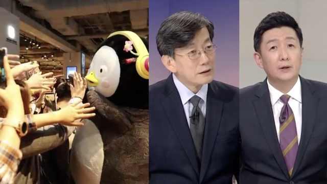 網紅企鵝訪外交部,新聞主播懵圈