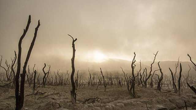 科学家警告气候变化或威胁人类文明