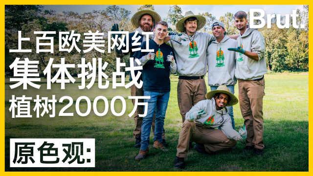上百欧美网红集体挑战植树两千万?