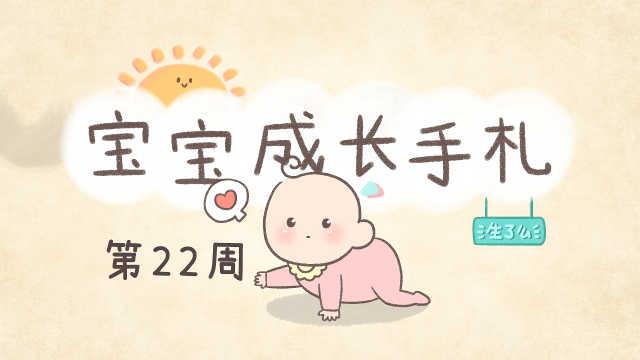 宝宝22周,精细动作有了很大的进步