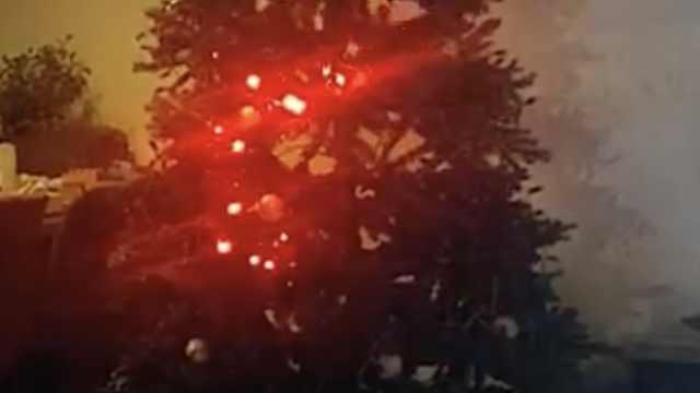 外国网友在圣诞树上玩贪吃蛇