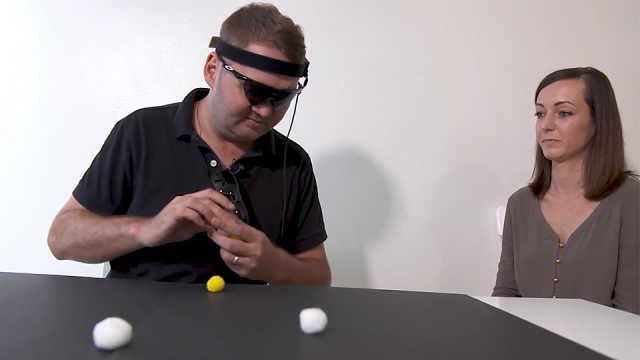 视觉皮层假体可植入大脑插图