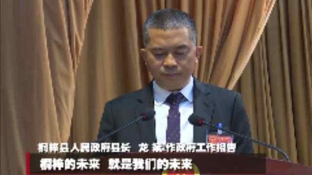 桐梓县长龙斌作出了政府工作报告