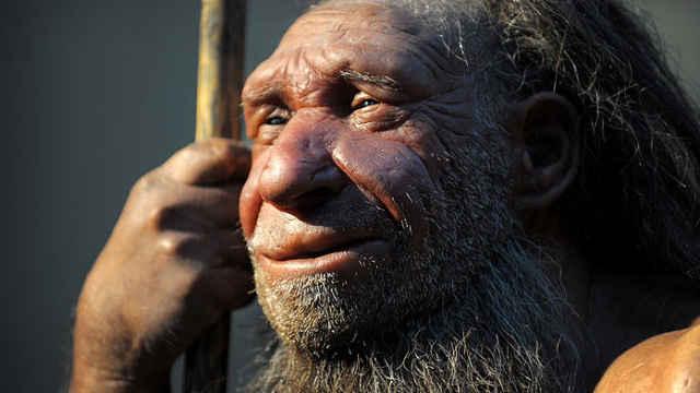 研究发现面恶人类被进化淘汰