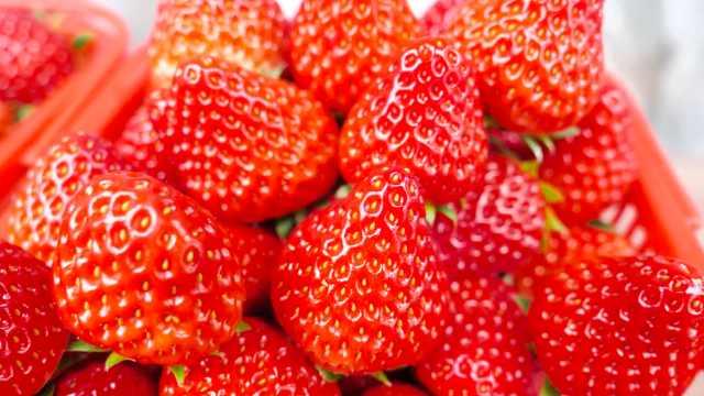 兄弟俩为照顾父母种草莓,1天卖千斤