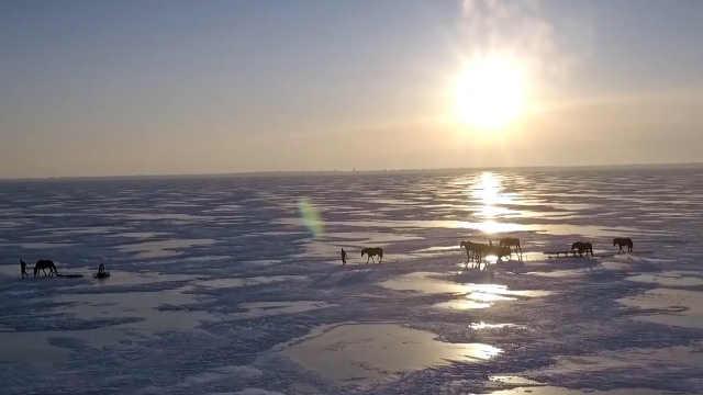 在最后的渔猎部落,体验一场冬捕
