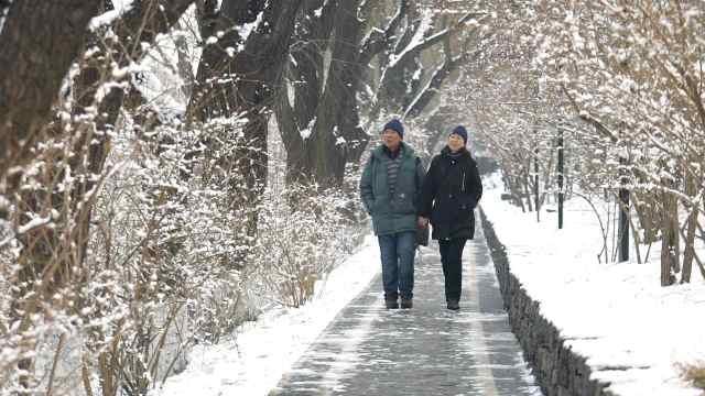 2020年第一场雪,大自然的馈赠