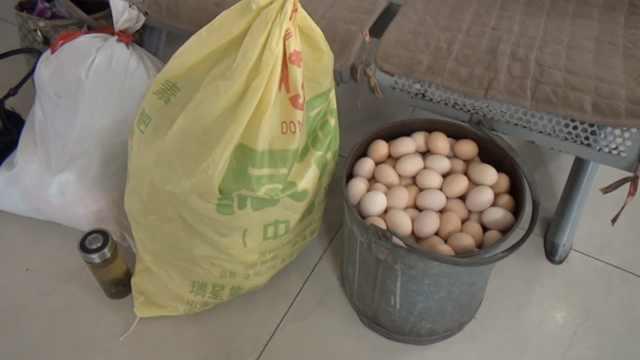 父母积攒200枚土鸡蛋:春节看儿子