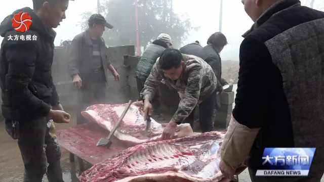 大方县星宿乡:杀年猪,迎新年