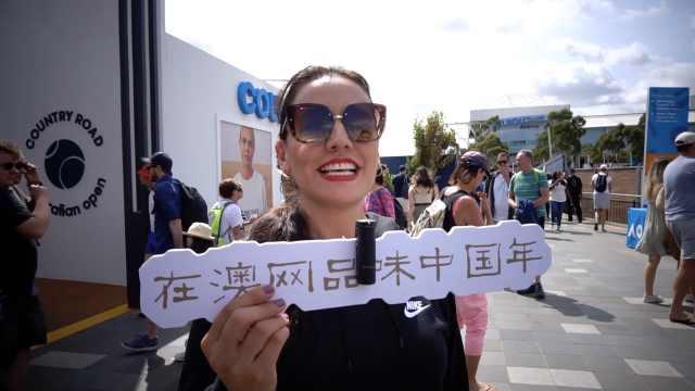 舞狮书法包饺子!在澳网品味中国年
