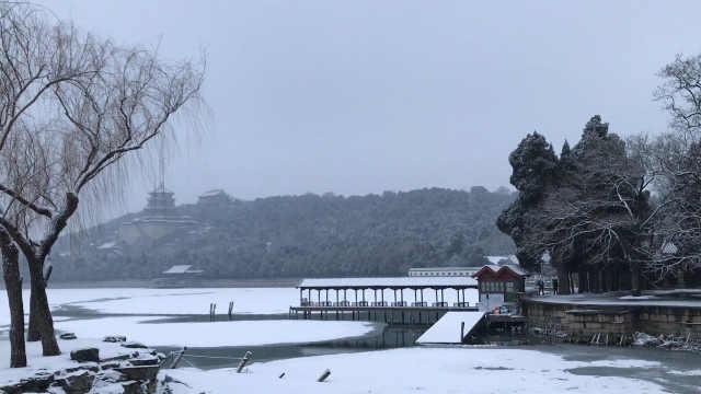 北京鼠年首场雪,但降雪杀不死病毒